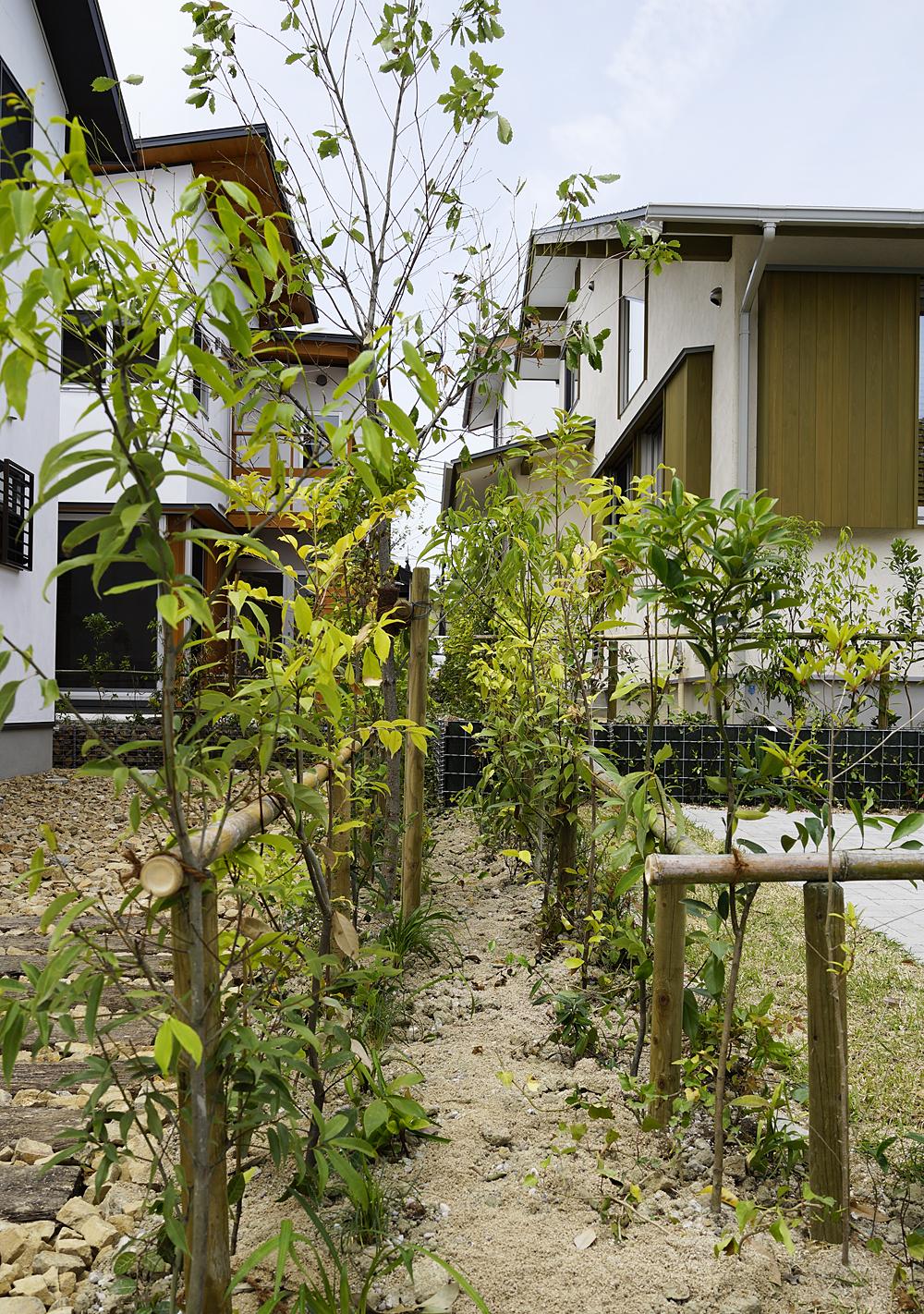 家と家の境界は、ブロック塀ではなく生垣となっている